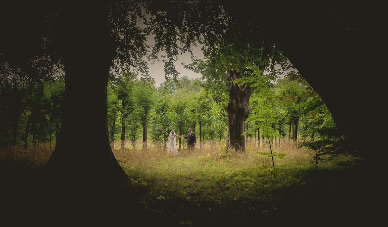26-sesja-w-lesie